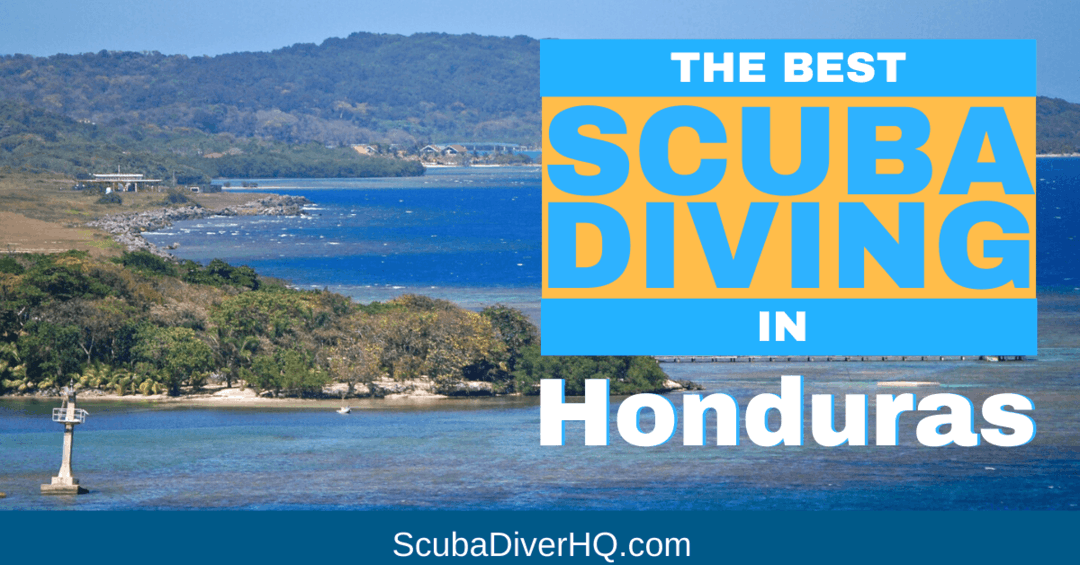 Diving In Honduras