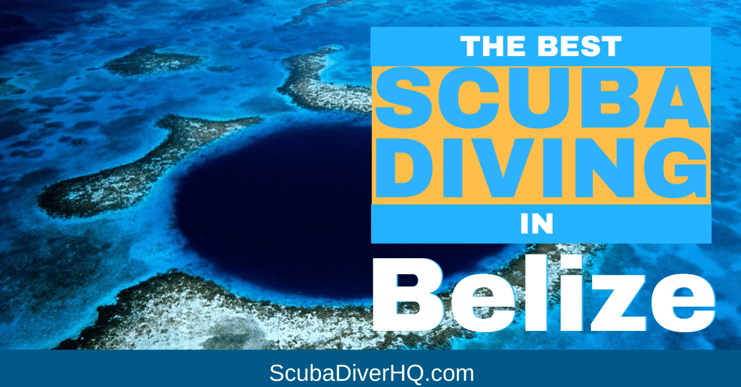 Best Scuba Diving In Belize